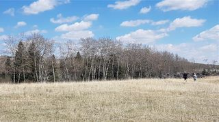 Photo 2: Range Road 55 in Rural Rocky View County: Rural Rocky View MD Land for sale : MLS®# C4295902