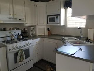 Photo 8: 151 Carefree Resort: Rural Red Deer County Land for sale : MLS®# A1013873