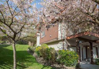 """Photo 19: 113 2000 PANORAMA Drive in Port Moody: Heritage Woods PM Townhouse for sale in """"MOUNTAINS EDGE"""" : MLS®# R2261425"""