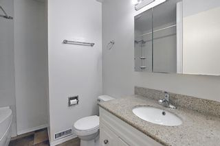 Photo 15: 6 124 Sabrina Way SW in Calgary: Southwood Row/Townhouse for sale : MLS®# A1121982