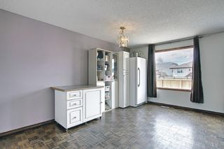 Photo 12: 23 Applecrest Court SE in Calgary: Applewood Park Detached for sale : MLS®# A1079523