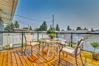 Photo 11: 703 Alderwood Place SE in Calgary: Acadia Detached for sale : MLS®# A1131581