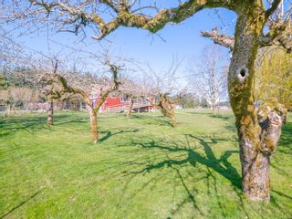 Photo 18: 2465 Quennell Rd in : Na Cedar House for sale (Nanaimo)  : MLS®# 879685
