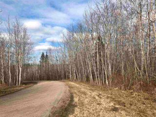 Photo 3: 12002 Twp Rd 605A: Rural St. Paul County Rural Land/Vacant Lot for sale : MLS®# E4239018