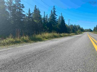 Photo 3: Lot Highway 320 in Pondville: 305-Richmond County / St. Peters & Area Vacant Land for sale (Highland Region)  : MLS®# 202119586