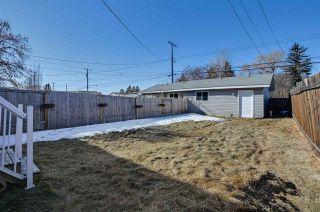 Photo 3: 10320 152 Street in Edmonton: Zone 21 House Half Duplex for sale : MLS®# E4231889