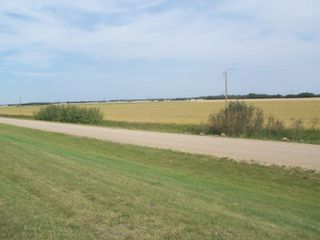 Photo 5: TWP 551 RR 234: Rural Sturgeon County Rural Land/Vacant Lot for sale : MLS®# E4245373