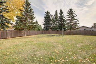 Photo 47: 17737 95 Street in Edmonton: Zone 28 Townhouse for sale : MLS®# E4266163