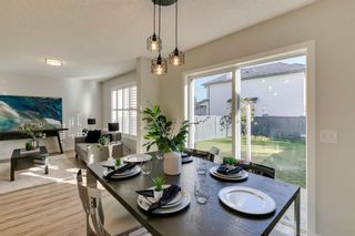 Photo 16: 11 Bridlewood Gardens SW in Calgary: Bridlewood Detached for sale : MLS®# A1149617