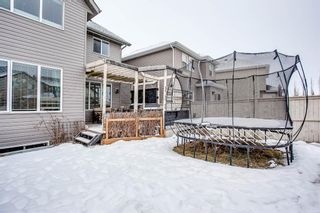 Photo 30: 691 COPPERPOND Circle SE in Calgary: Copperfield Detached for sale : MLS®# A1063241