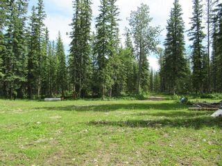 Photo 10: 70041 Highway 591: Rural Clearwater County Detached for sale : MLS®# C4305359