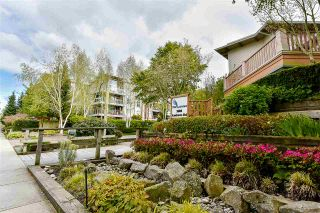 Photo 13: 229 5600 ANDREWS ROAD in Richmond: Steveston South Condo for sale : MLS®# R2162664