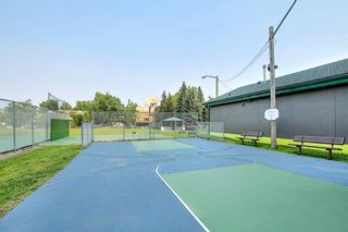 Photo 32: 302 2316 17B Street SW in Calgary: Bankview Apartment for sale : MLS®# A1147214