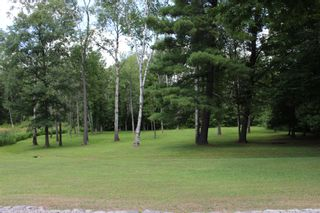 Photo 44: 20 Pine Court in Northumberland/ Trent Hills/Warkworth: House for sale : MLS®# 140196