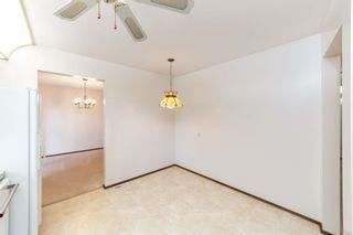 Photo 3:  in Edmonton: Zone 22 House for sale : MLS®# E4248753