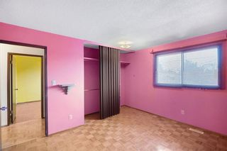 Photo 20: 128 Dovertree Place SE in Calgary: Dover Semi Detached for sale : MLS®# A1075565