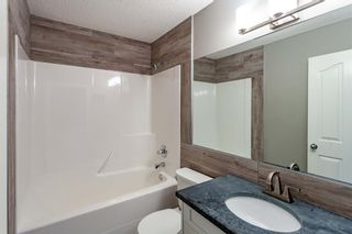 Photo 19: 53 Inverness Drive SE in Calgary: McKenzie Towne Detached for sale : MLS®# A1126962