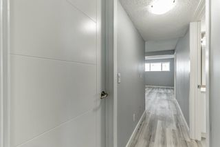 Photo 34: 23 Erin Meadows Court SE in Calgary: Erin Woods Detached for sale : MLS®# A1146245