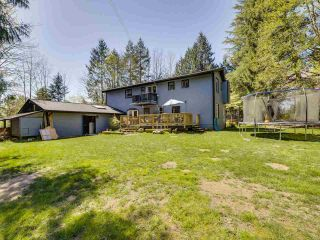 Photo 28: 24255 54 Avenue in Langley: Salmon River House for sale : MLS®# R2569756