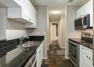 Photo 15: 304 545 18 Avenue SW in Calgary: Cliff Bungalow Apartment for sale : MLS®# A1129205