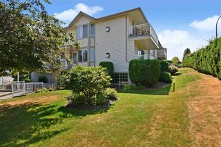 """Photo 27: 37 3110 TRAFALGAR Street in Abbotsford: Central Abbotsford Townhouse for sale in """"NORTHVIEW PROPERTIES"""" : MLS®# R2601681"""