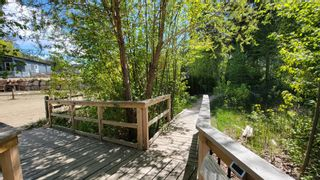 Photo 16: C64 2698 Blind Bay Road: Blind Bay Vacant Land for sale (South Shuswap)  : MLS®# 10232380