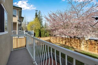 Photo 34: 8068 168A Street in Surrey: Fleetwood Tynehead House for sale : MLS®# R2559682