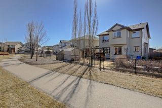 Photo 42: 8 Drake Landing Ridge: Okotoks Detached for sale : MLS®# A1091087
