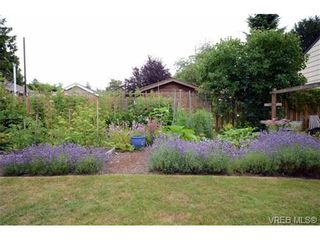 Photo 18: 1679 Knight Ave in VICTORIA: SE Mt Tolmie House for sale (Saanich East)  : MLS®# 677181