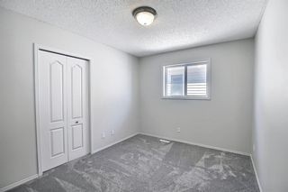 Photo 24: 253 Elgin Way SE in Calgary: McKenzie Towne Detached for sale : MLS®# A1087799