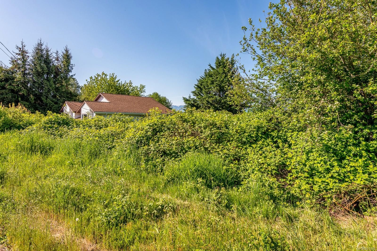 Main Photo: 325 Back Rd in : CV Courtenay East Land for sale (Comox Valley)  : MLS®# 875580