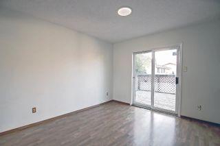 Photo 6:  in Edmonton: Zone 29 House for sale : MLS®# E4262869