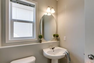Photo 15: 227 Silver Springs Way NW: Airdrie Detached for sale : MLS®# A1083997