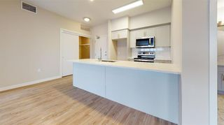 Photo 15: PH11 399 Stan Bailie Drive in Winnipeg: South Pointe Rental for rent (1R)  : MLS®# 202121858