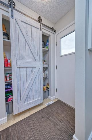 Photo 31: 39 Erin Green Way SE in Calgary: Erin Woods Detached for sale : MLS®# A1118796