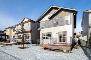 Photo 26: 12 Skyview Springs Crescent NE in Calgary: Skyview Ranch Detached for sale : MLS®# A1067284