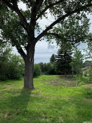 Photo 3: 218 Lewis Street in Pense: Lot/Land for sale : MLS®# SK863719