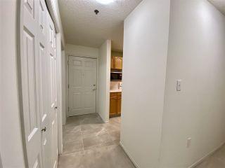 Photo 42: 203 17511 98A Avenue in Edmonton: Zone 20 Condo for sale : MLS®# E4224086