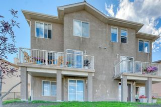 Photo 47: 105 Royal Crest View NW in Calgary: Royal Oak Residential for sale : MLS®# A1060372
