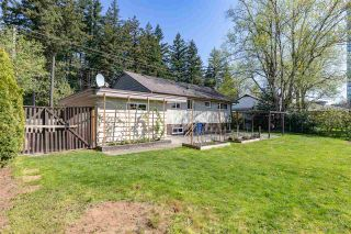 Photo 21: 32740 BEVAN Avenue in Abbotsford: Abbotsford West House for sale : MLS®# R2569663