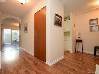 Photo 9: 105 415 Linden Ave in VICTORIA: Vi Fairfield West Condo for sale (Victoria)  : MLS®# 790250
