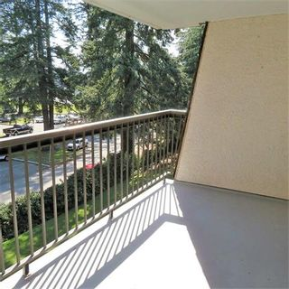 Photo 10: 308 32175 Old Yale Road in Abbotsford: Abbotsford West Condo for sale : MLS®# R2350844