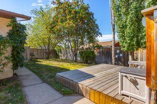 Photo 44: 309 GREENOCH Crescent in Edmonton: Zone 29 House for sale : MLS®# E4261883