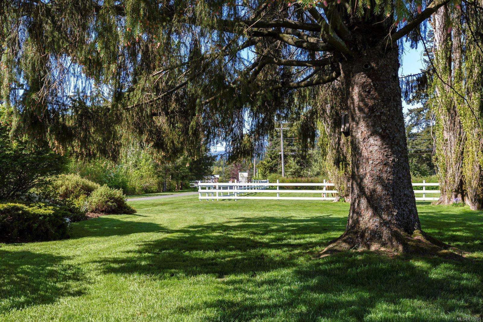 Photo 35: Photos: Vancouver Island Horse Property