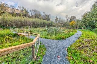 """Photo 14: 312 2242 WHATCOM Road in Abbotsford: Abbotsford East Condo for sale in """"WATERLEAF"""" : MLS®# R2016906"""