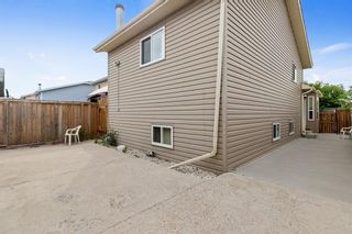 Photo 22: 249 martindale Boulevard NE in Calgary: Martindale Detached for sale : MLS®# A1116896