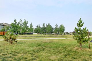 Photo 36: 1308 Windstone Road SW: Airdrie Detached for sale : MLS®# A1137520