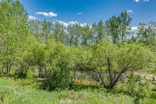 Photo 39: 25205 Bearspaw Place in Rural Rocky View County: Rural Rocky View MD Detached for sale : MLS®# A1121781