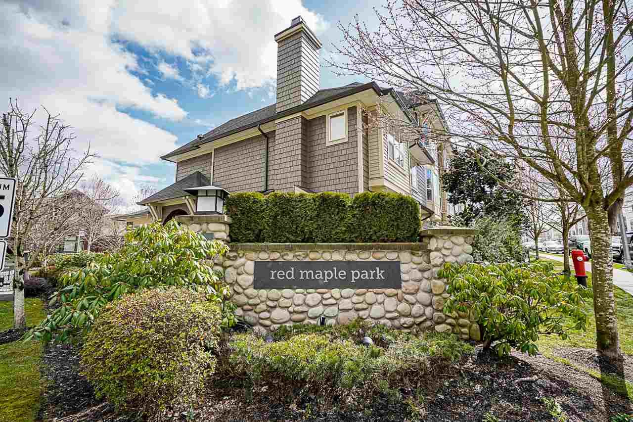 """Main Photo: 53 7938 209 Street in Langley: Willoughby Heights Townhouse for sale in """"Red Maple Park"""" : MLS®# R2559929"""