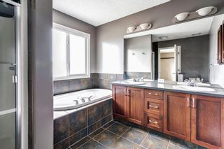 Photo 28: 1571 COPPERFIELD Boulevard SE in Calgary: Copperfield Detached for sale : MLS®# A1107569